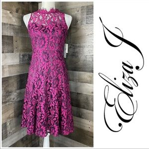 Eliza J Floral Lace Dress Fit & Flare Sz 0P